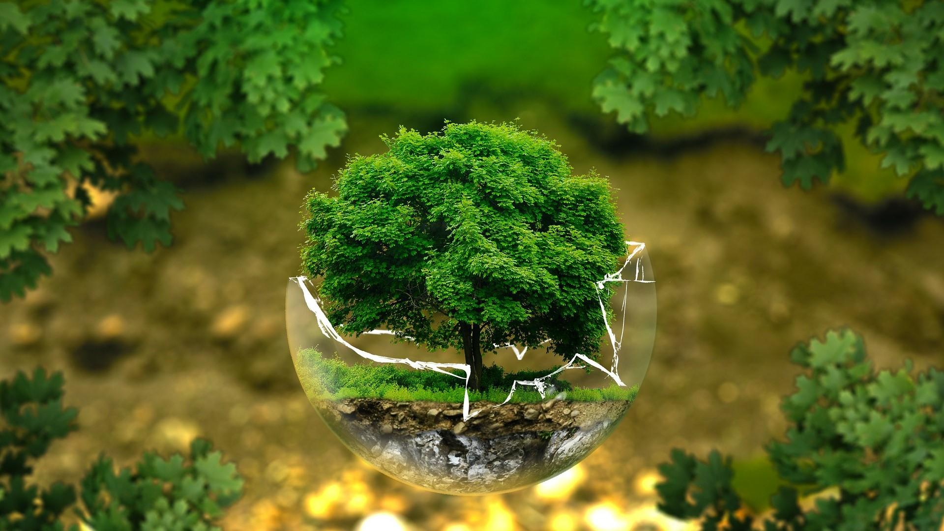 環境・資源分野の翻訳